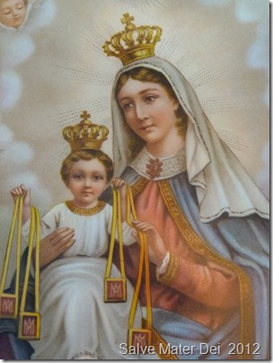 Brown Scapulars Ireland Website